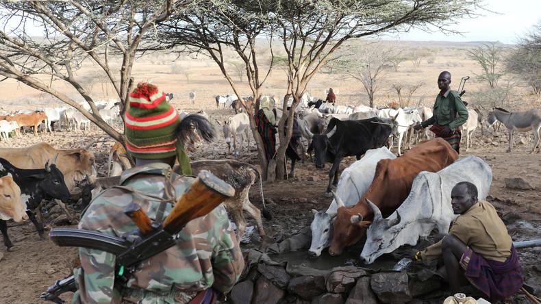 Kenia: Extremdürre führt zu Spannungen zwischen Viehtreibern und ethnischen Stammesgruppen