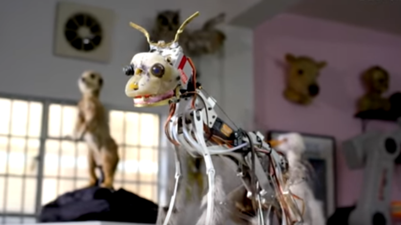 """Wissenschaftler zeigen, wie Tierroboter-""""Spione"""" funktionieren"""