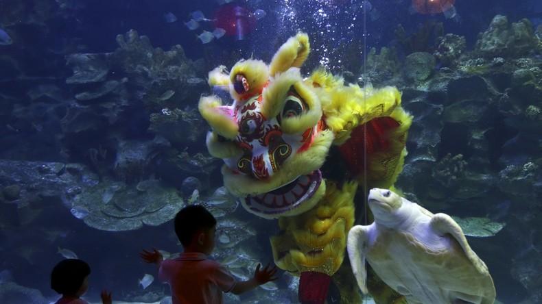 Alles für die Wissenschaft? China baut größte Tiefseestation im Südchinesischen Meer