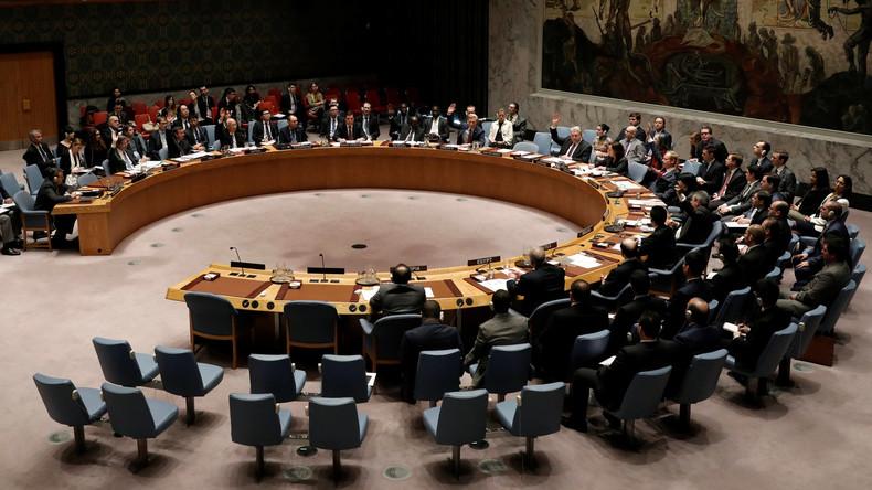 Russland und China legen Veto gegen UN-Resolution zu Syrien-Sanktionen ein