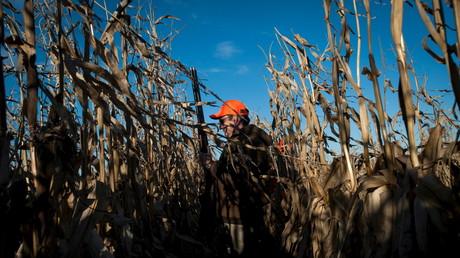 US-Republikaner Ted Cruz in einem Maisfeld in Iowa, 31. Oktober 2015