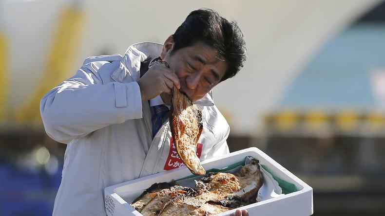 Fukushima-Grüße aus Japan: Radioaktive Fische erreichen nordamerikanische Westküste