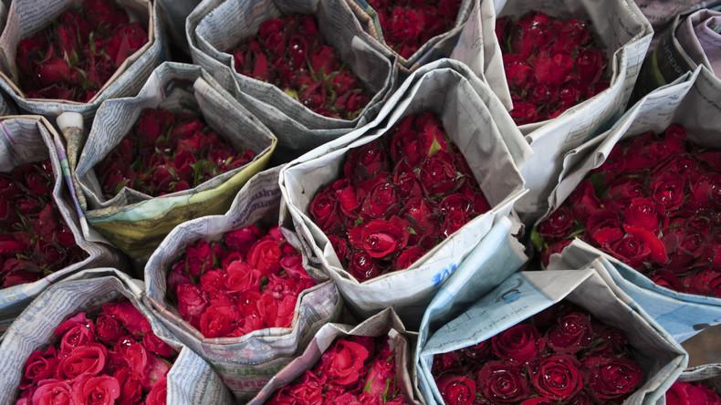 Diebe stehlen alle Rosen in Rigaer Blumengeschäft