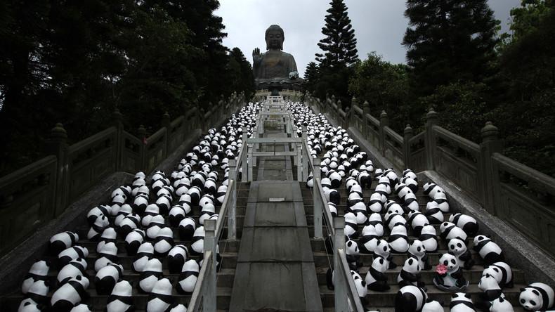 Pandas First: Chinas Behörden wollen 172.000 Menschen umsiedeln