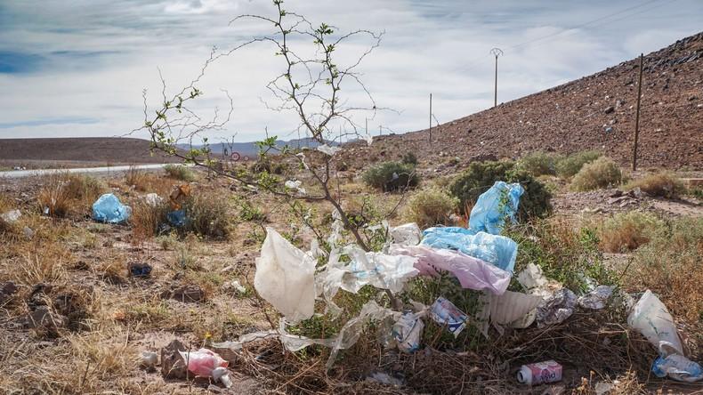 UNO: 2050 gibt es im Weltmeer mehr Plastikmüll als Fische