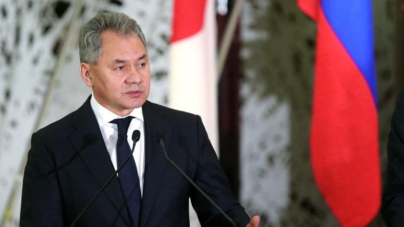 Russlands Verteidigungsminister: Russland schlägt Japan vor, an Entminung von Palmyra teilzunehmen