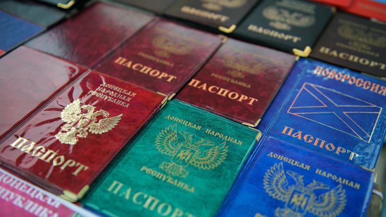 Vorsitzender russischer Regierungspartei: Anerkennung Donezker und Lugansker Pässe provisorisch