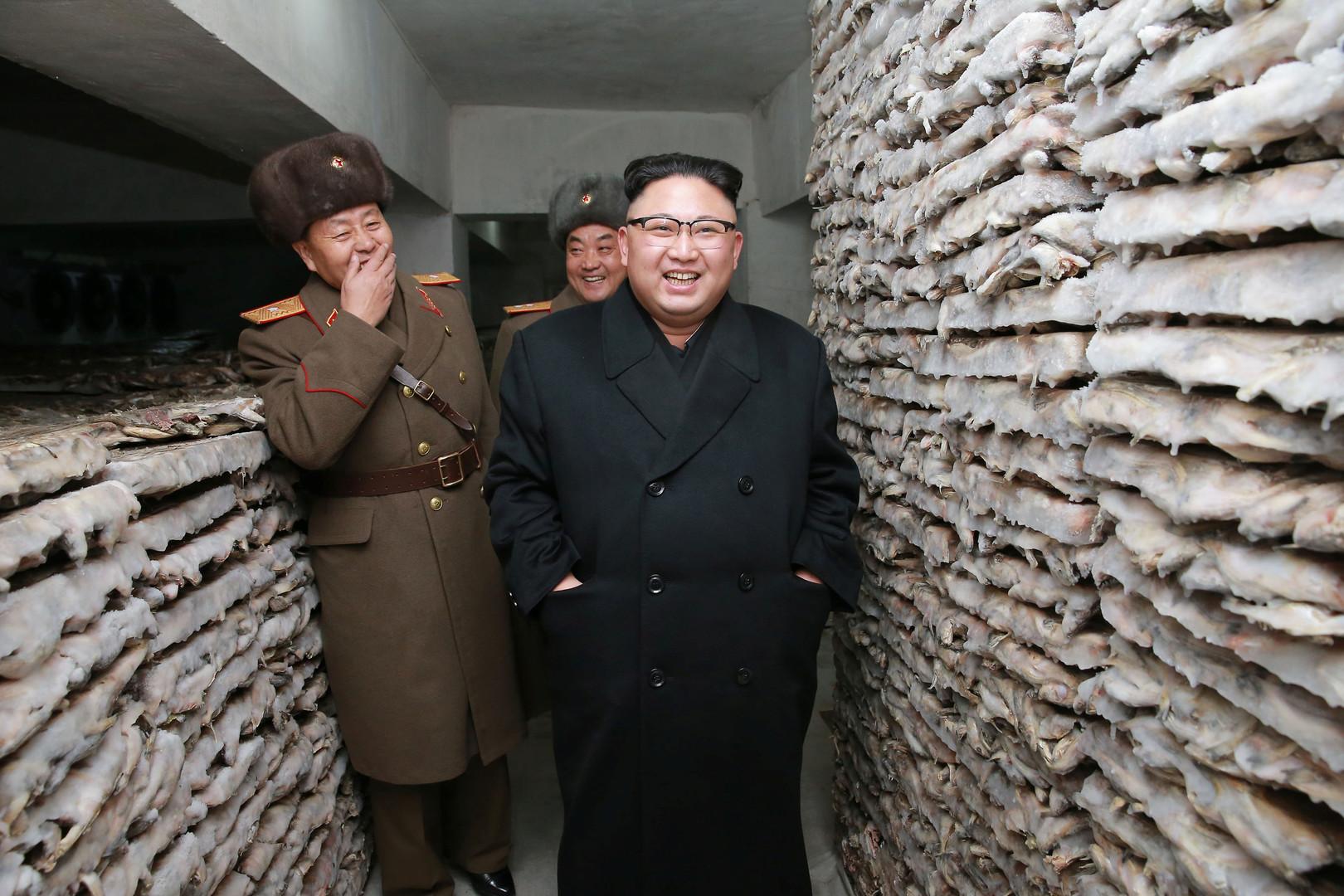 Nordkorea wappnet sich gegen eine Invasion durch USA und Südkorea