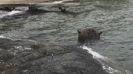 86-jährige Seemine an schwedische Küste angeschwemmt