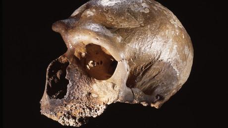 Wissenschaftler entdecken älteste in Europa Neandertaler-Siedlung (Symbolbild)