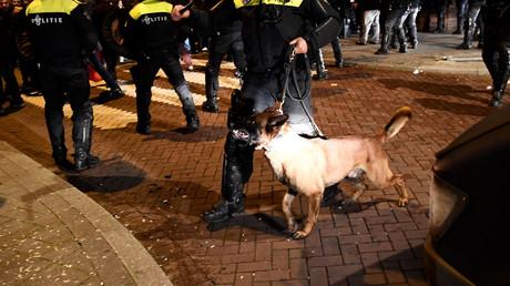 Meinte Çavuşoğlu nur die Polizeihunde oder auch die niederländischen Behörden, die den Auftritt der türkischen Familienministerin blockierten und sie zurück nach Deutschland brachten?