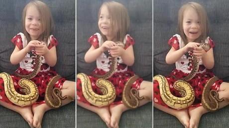 Dreijähriges Mädchen spielt mit Königspythons [VIDEO]