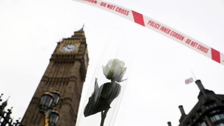 Inzwischen hat sich die Terrormiliz