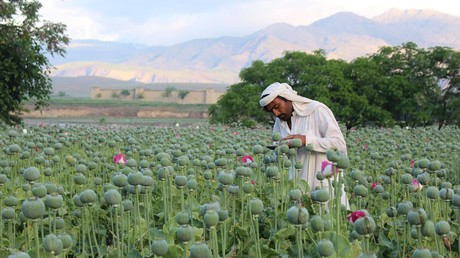 US-Botschaft in Afghanistan kündigt Mitarbeiter für Drogenkonsum und –handel (Symbolbild)
