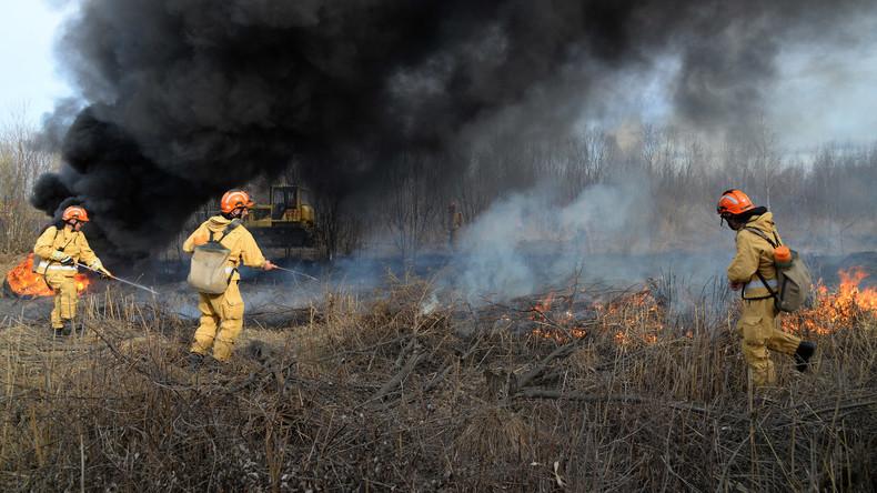 Zehntausende Menschen löschen Waldbrände in Sibirien