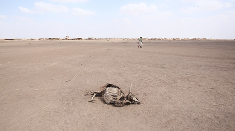 Auch mehrere Regionen Äthiopiens sind von extremer Dürre betroffen.
