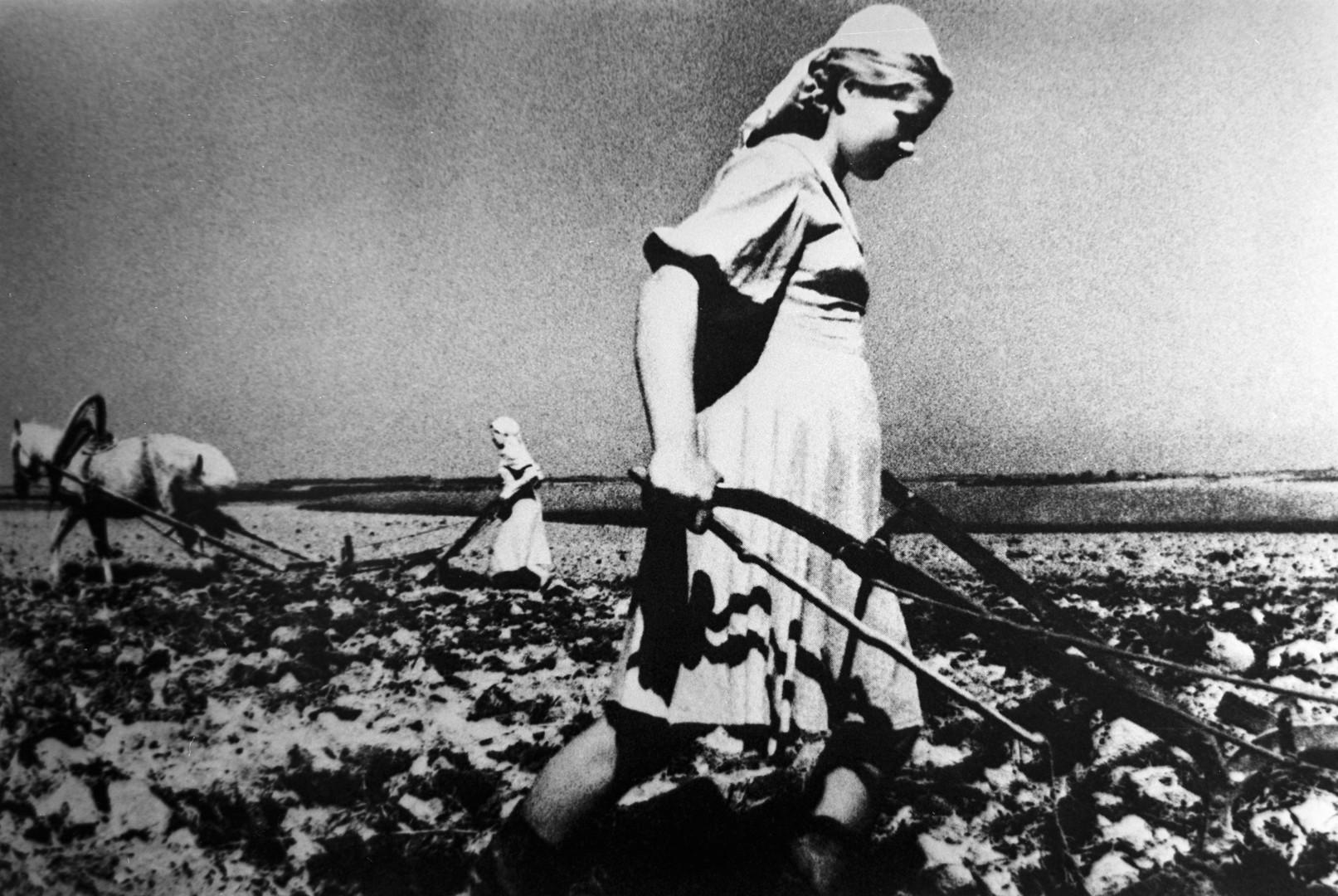 Während des Krieges mussten die Frauen Holz fällen sowie Anti-Panzergräben und Schützengräben ausheben. Aber auch die Arbeit auf den Feldern und in anderen Bereichen der Landwirtschaft blieb an ihnen hängen.