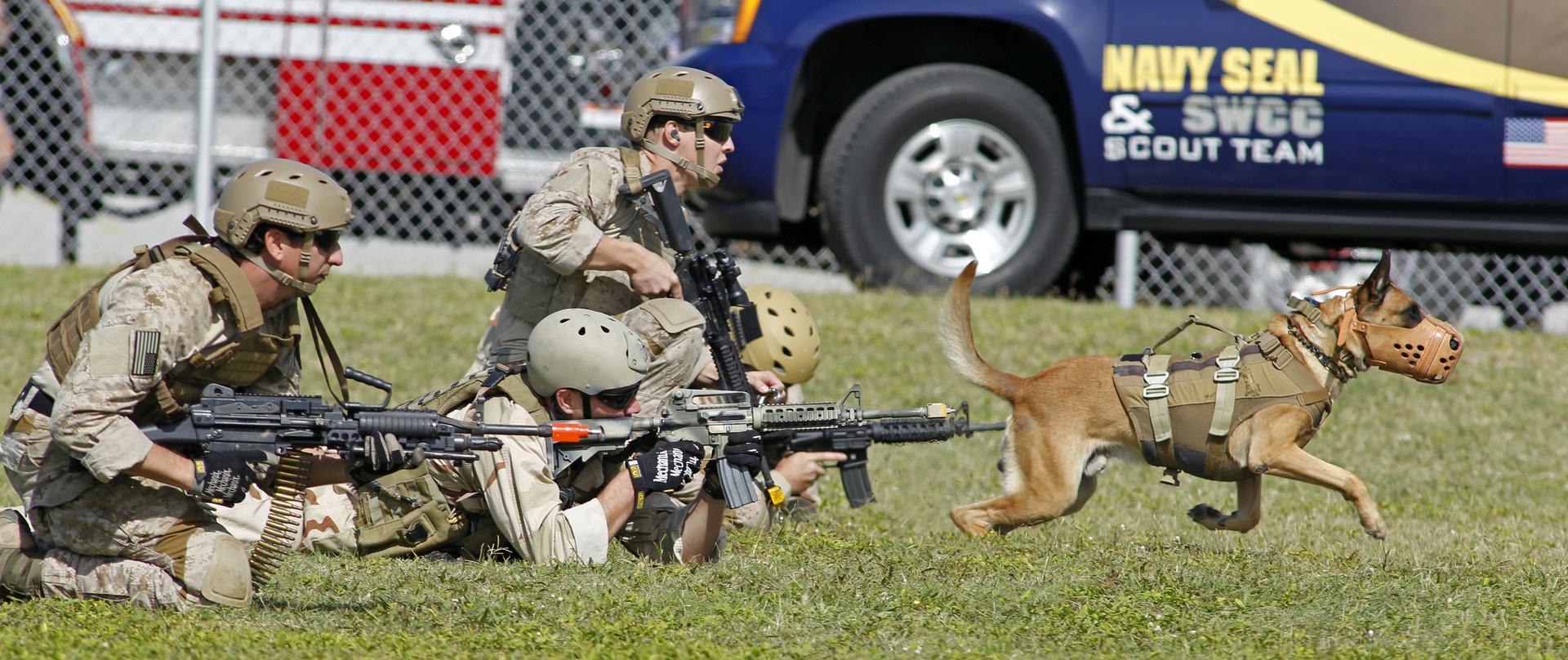 Das Töten optimieren: US-Spezialeinheiten testen Neurostimulation für bessere Kampffähigkeiten