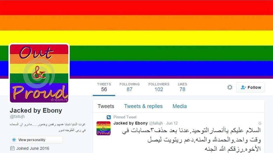 Hacker kapert wieder IS-Twitter-Account und flutet ihn mit Schwulenpornos