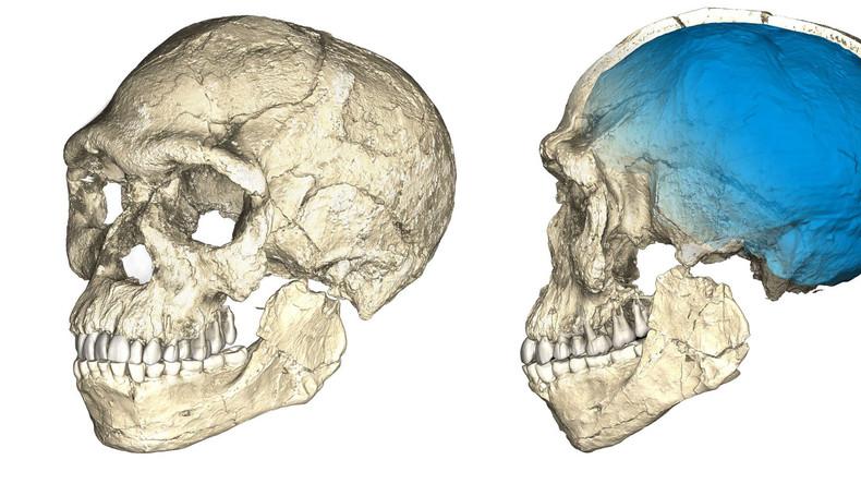 300.000 Jahre: Älteste menschliche Fossilien in Marokko ausgegraben