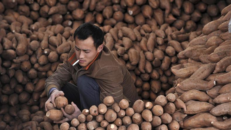 Pommes aus dem Weltall: China will auf dem Mond Kartoffeln züchten