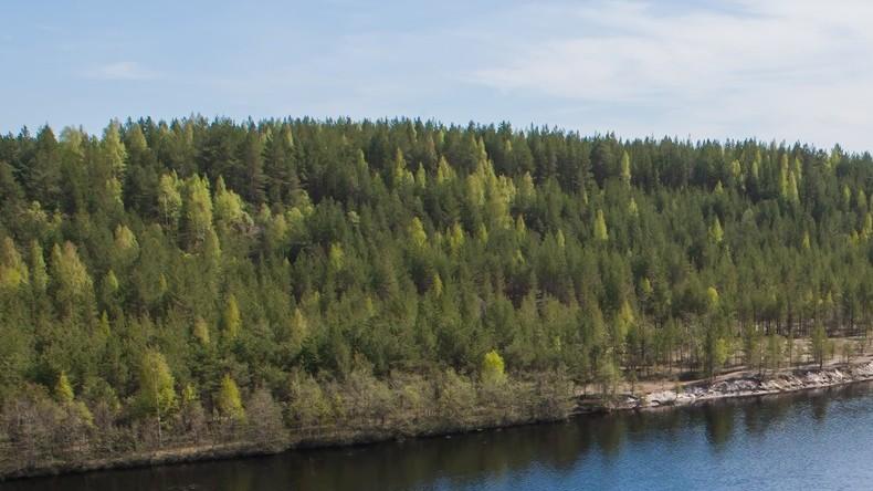 UNESCO erkennt Schwarzwaldgebiet als Biosphärenreservat an