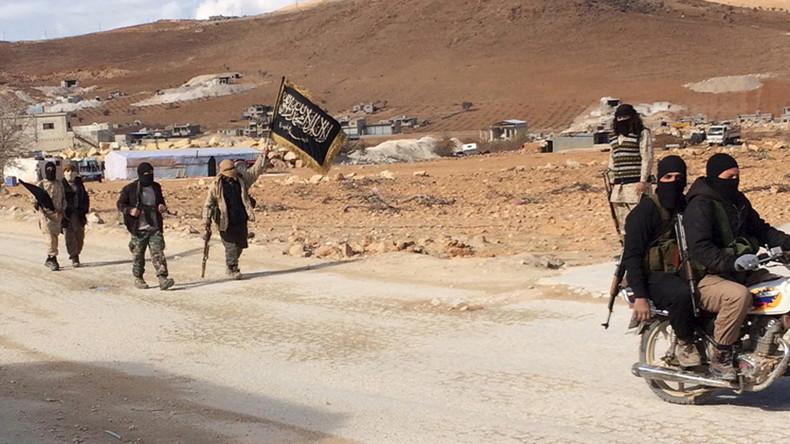 Lawrow kritisiert Inkonsequenz der USA: Sie greifen in Syrien den IS an, aber nicht Al-Kaida