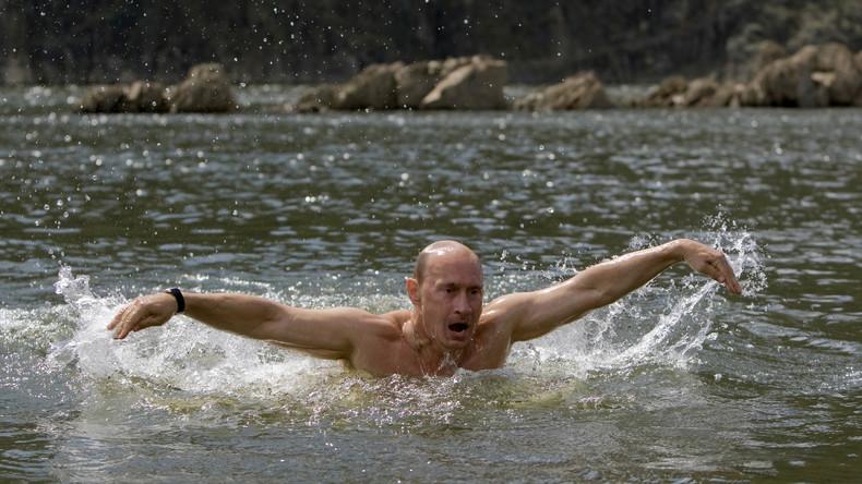 Putins neuer Urlaubsschreck: Haie auf Mallorca