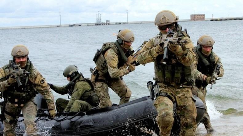 Polnische NATO-Soldaten führen unerlaubt Landungsmanöver an neutraler schwedischer Küste durch