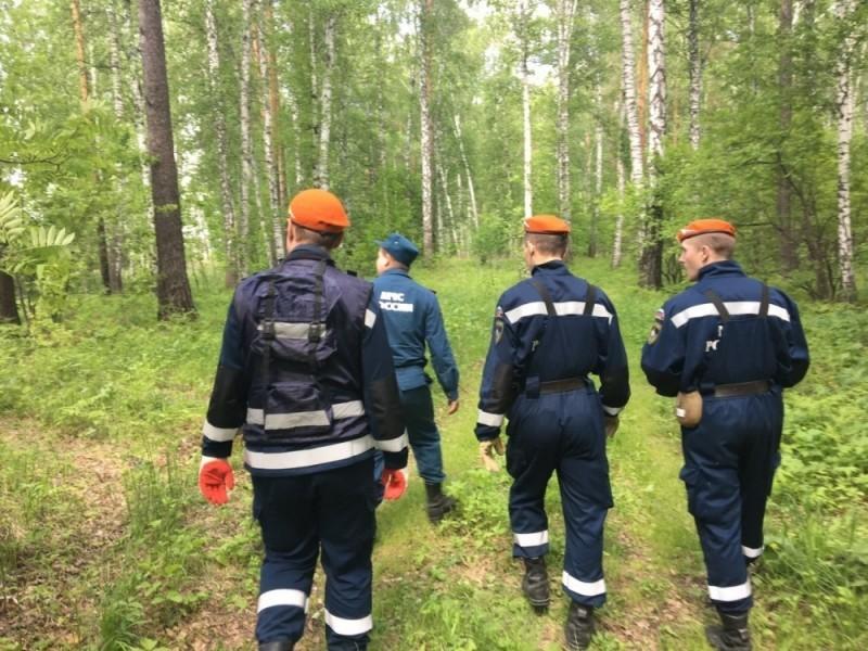 """""""Er trank Sumpfwasser und aß Gras"""" – Vierjähriger Junge nach 4 Tagen im Wald lebend gefunden"""