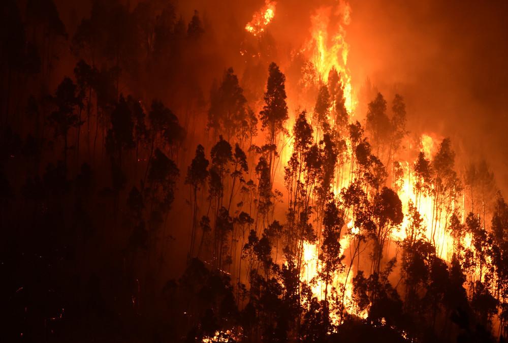 Der Brand begann im zentralen Distrikt Leiria und wurde durch die extrem hohen Temperaturen, die bis zu 40 Grad Celsius erreichten, weiter begünstigt.