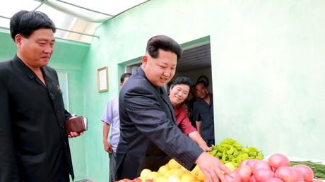 Das nordkoreanische Regierungsoberhaupt Kim Jong-un, begutachtet Lebensmittel in Pjöngjang, Nordkorea, 30. Juni 2015.