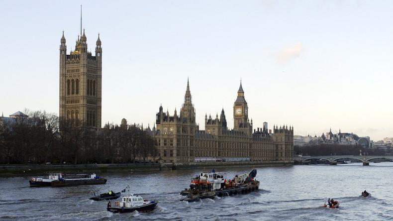 Studie in Großbritannien: Transgenderfische durch verseuchte Abwässer