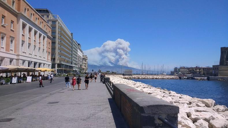 Waldbrände in Italien - in vier Wochen fast so viel Fläche verbrannt wie im gesamten letzten Jahr