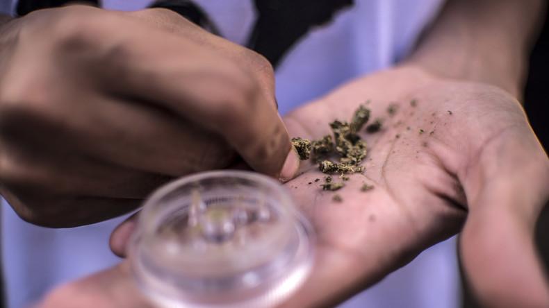 Weltweit einmaliges Experiment: Uruguay startet Marihuana-Verkauf