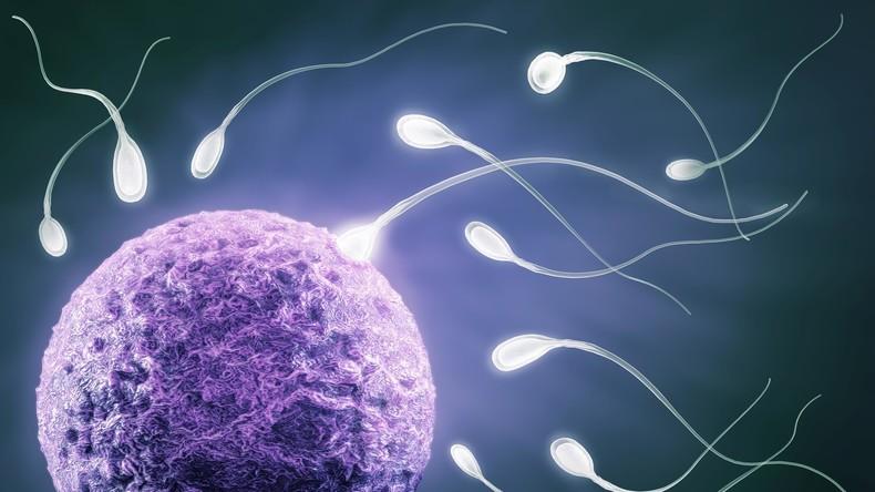 Europa stirbt aus - Immer weniger Spermien bei europäischen Männern