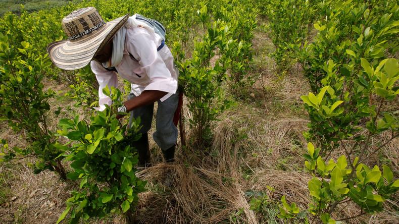 Europäische Union und Welternährungsorganisation zu Besuch in Kolumbien