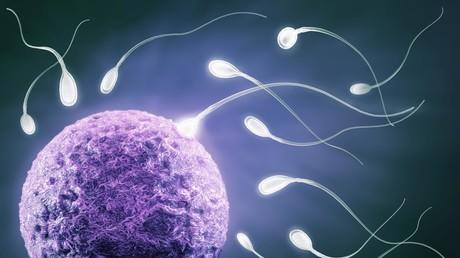Die Spermienanzahl ist maßgeblich bei der Beurteilung der Zeugungsfähigkeit.