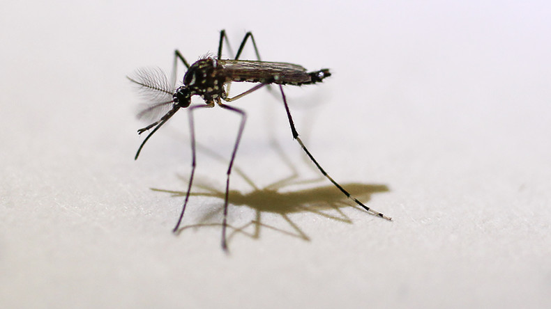 Kölnerin verliert beide Beine und halben Arm wegen Mückenstichs