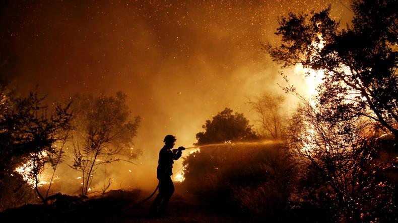 Großbrand in Ferienregion im Nordosten Athens - Tausende auf der Flucht [FOTOS]