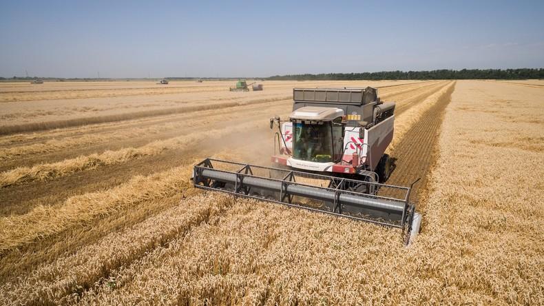 Getreideernte in Russland bricht sowjetische Rekorde