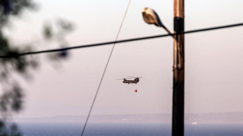 Feuer zerstört viel Wald auf Insel Zakynthos
