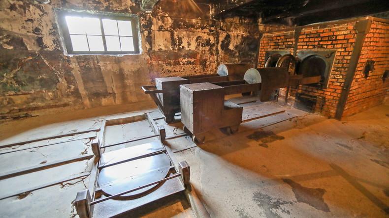 Umfrage: Vier von zehn deutschen Schülern wissen nicht, was Auschwitz ist