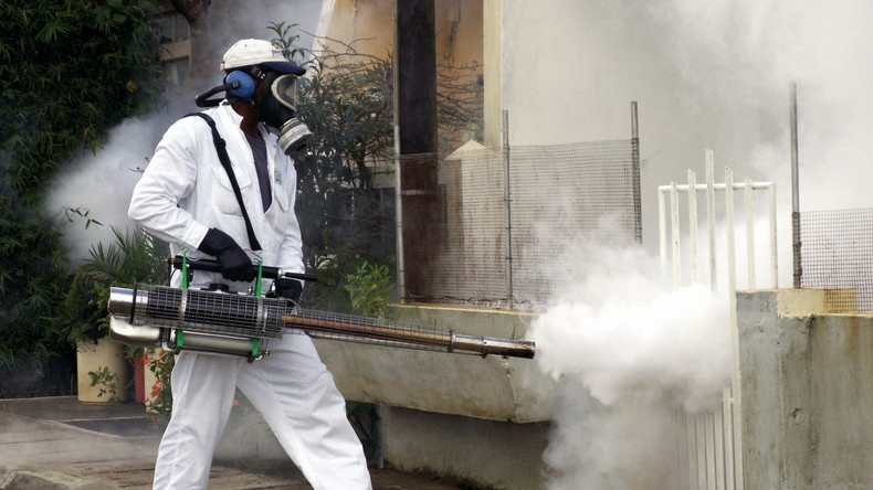 Tödlicher Pestausbruch auf Madagaskar: Über 200 Infizierte und bereits 30 Tote