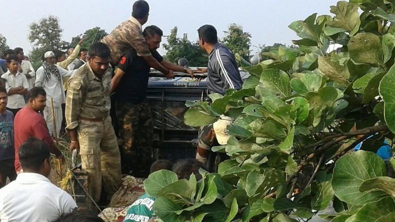 Indien: Menschenfressende Tigerin zum Abschuss freigegeben, aber von Elektrozaun erwischt