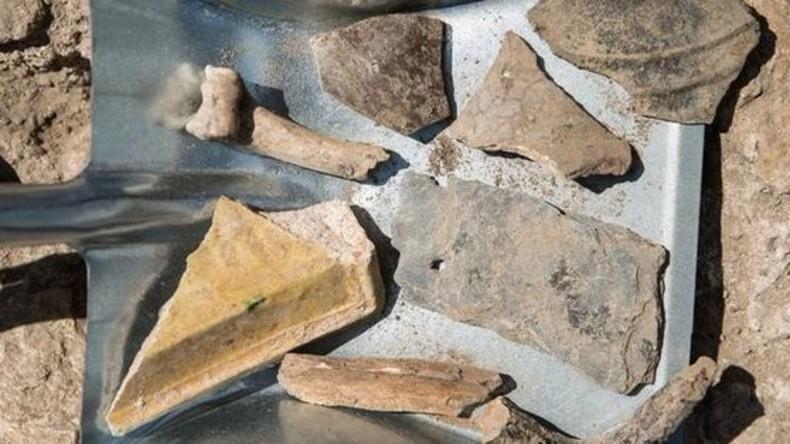 Rätsel für Archäologen: Millionen Jahre alte Zähne im Ur-Rhein entdeckt
