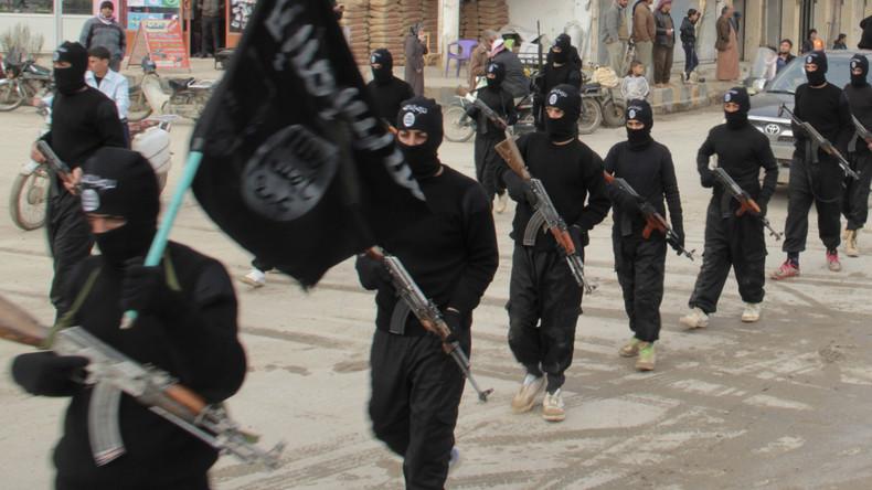 Ernsthafte Bedrohung: US-Sicherheitschefin warnt vor Anschlag in 9/11-Maßstab durch IS und Al-Kaida