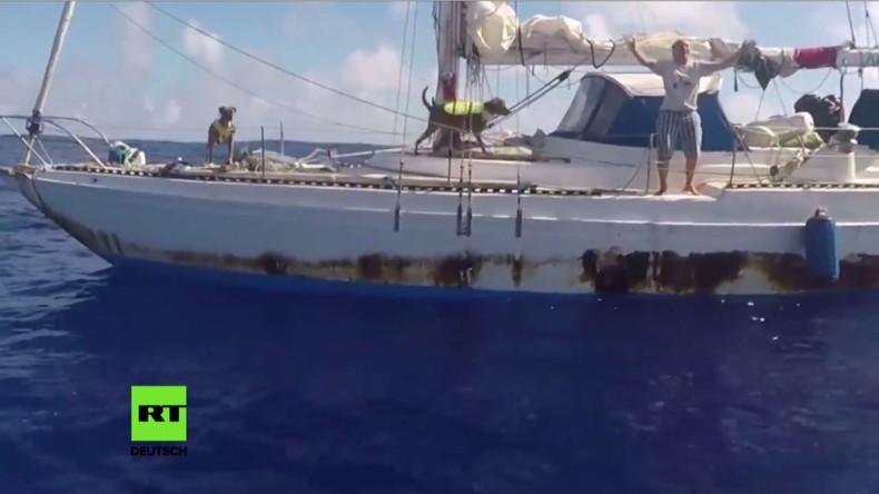 US-Navy rettet Seeleute und deren Hunde nach Monaten mit defektem Motor