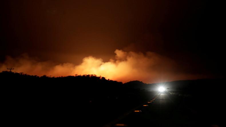 65.000 Hektar Savanne durch Großbrand im brasilianischen Naturpark vernichtet