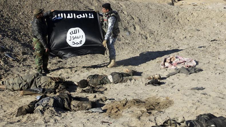 """""""Wir sollten sie töten"""": Kämpfer des """"Islamischen Staates"""" kehren nach Europa zurück [Video]"""